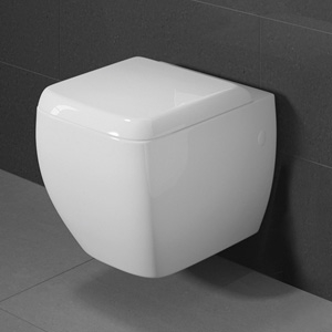 Wall Hung Toilet (all models)